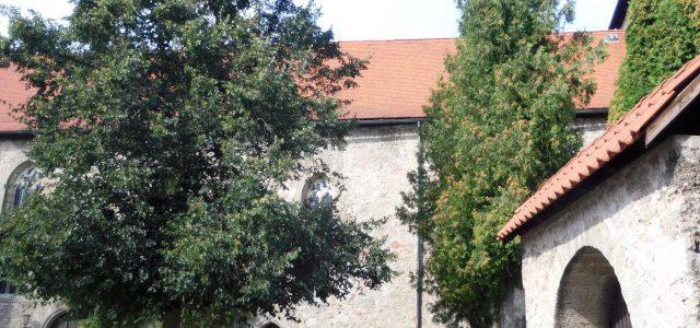 Bilder Kirchenburg Rohr